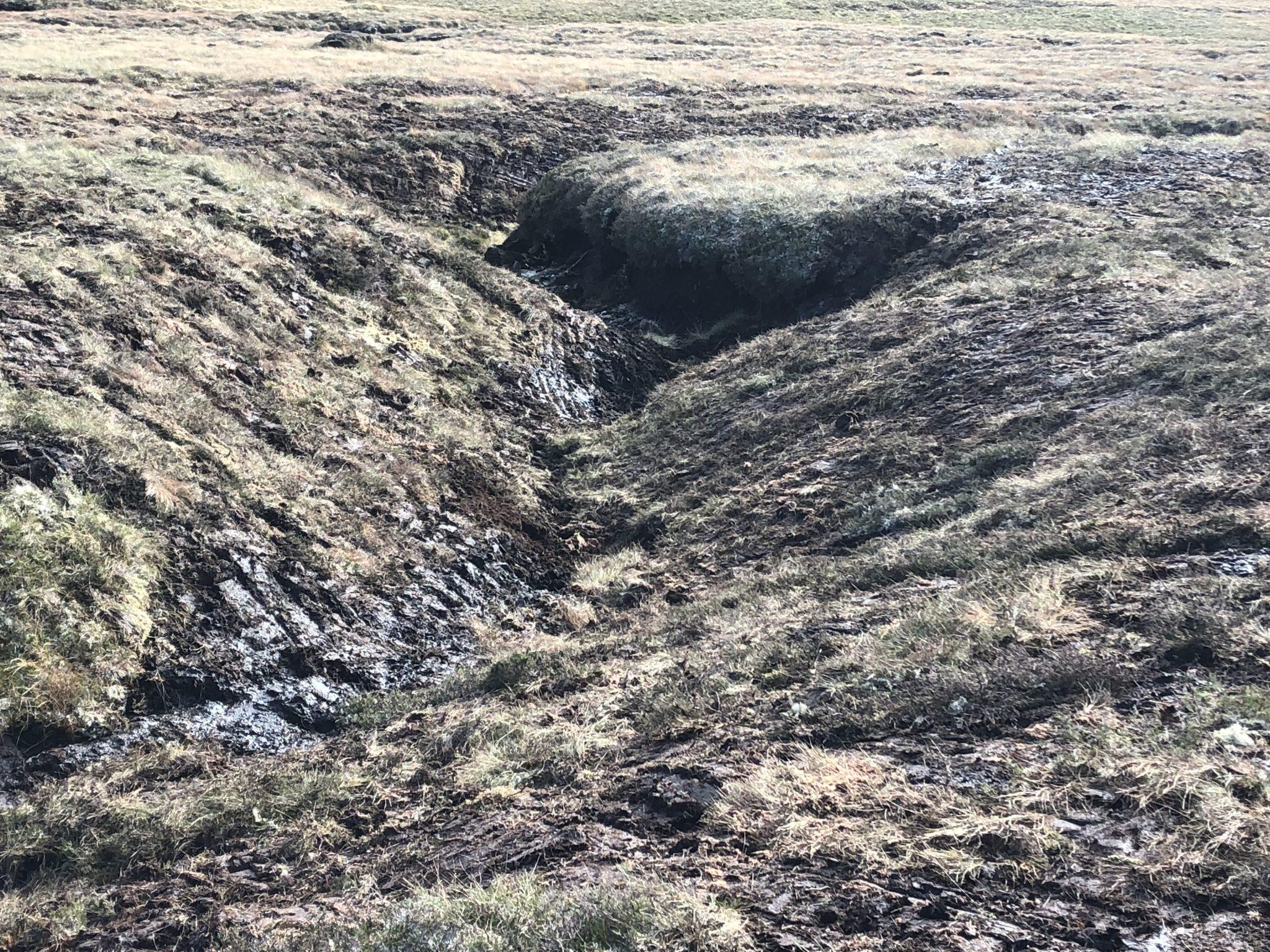 Monadhliath Peatland Restoration – update