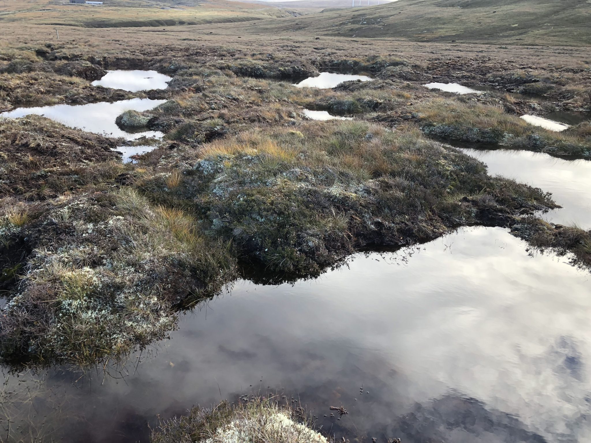 Peat Action Monadhliath – update