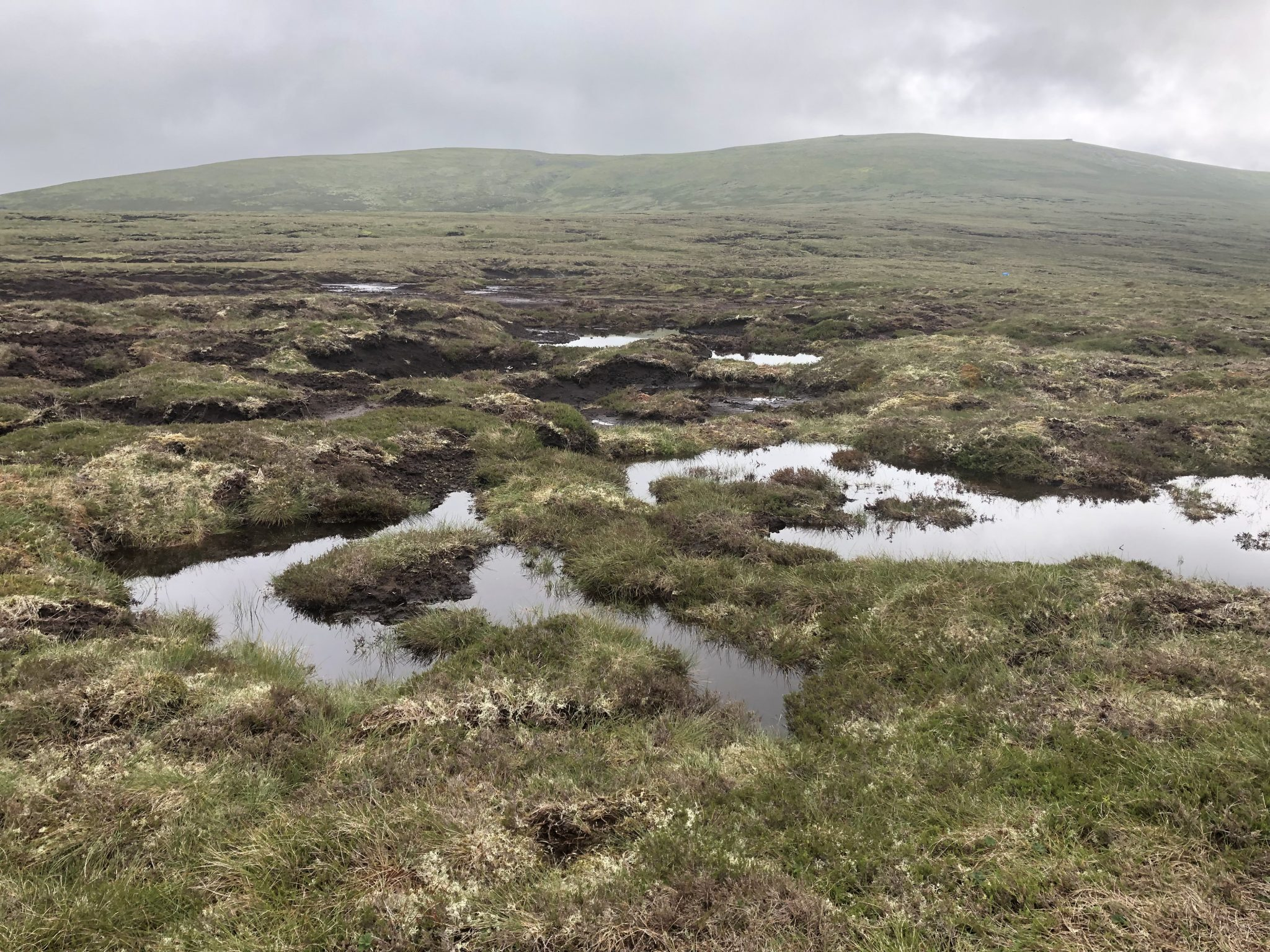 Monadhliath Peat Action update